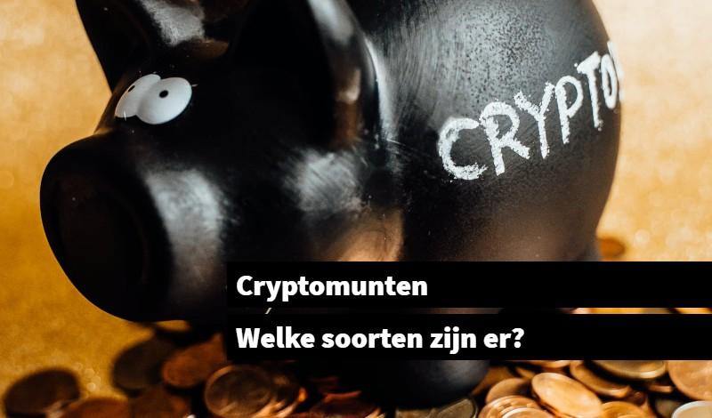 Cryptomunten Welke soorten zijn er_